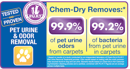 Pet Urine Removal Treatment by Crossroads Chem-Dry Removes 99.9% of Pet Urine Odor & 99.2% of Pet Urine Bacteria